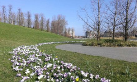 Lente in Toolenburg
